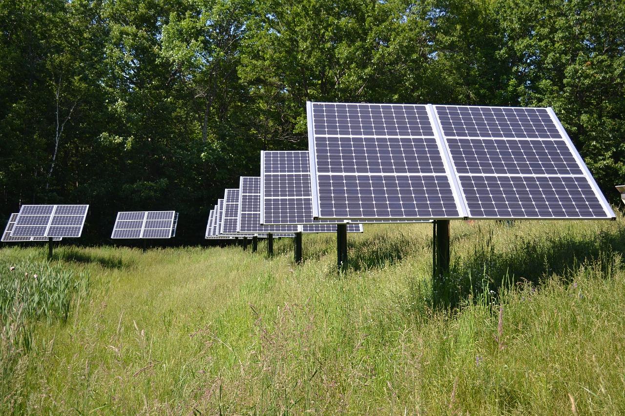 Nu kan du nemt tjene ekstra penge – Solenergi